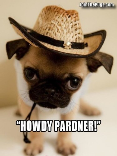 Join the Pugs - (Howdy Pardner)