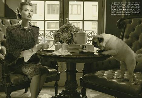 Pugs of Downton Abbey