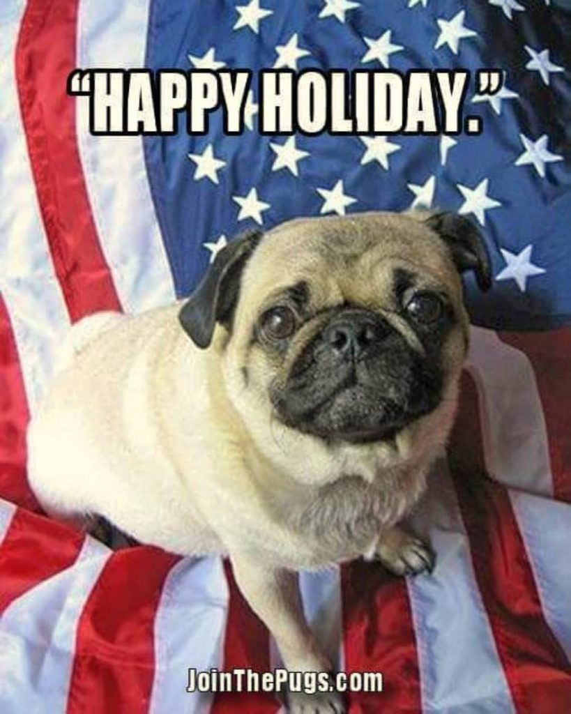 Happy July 4th from Join the Pugs